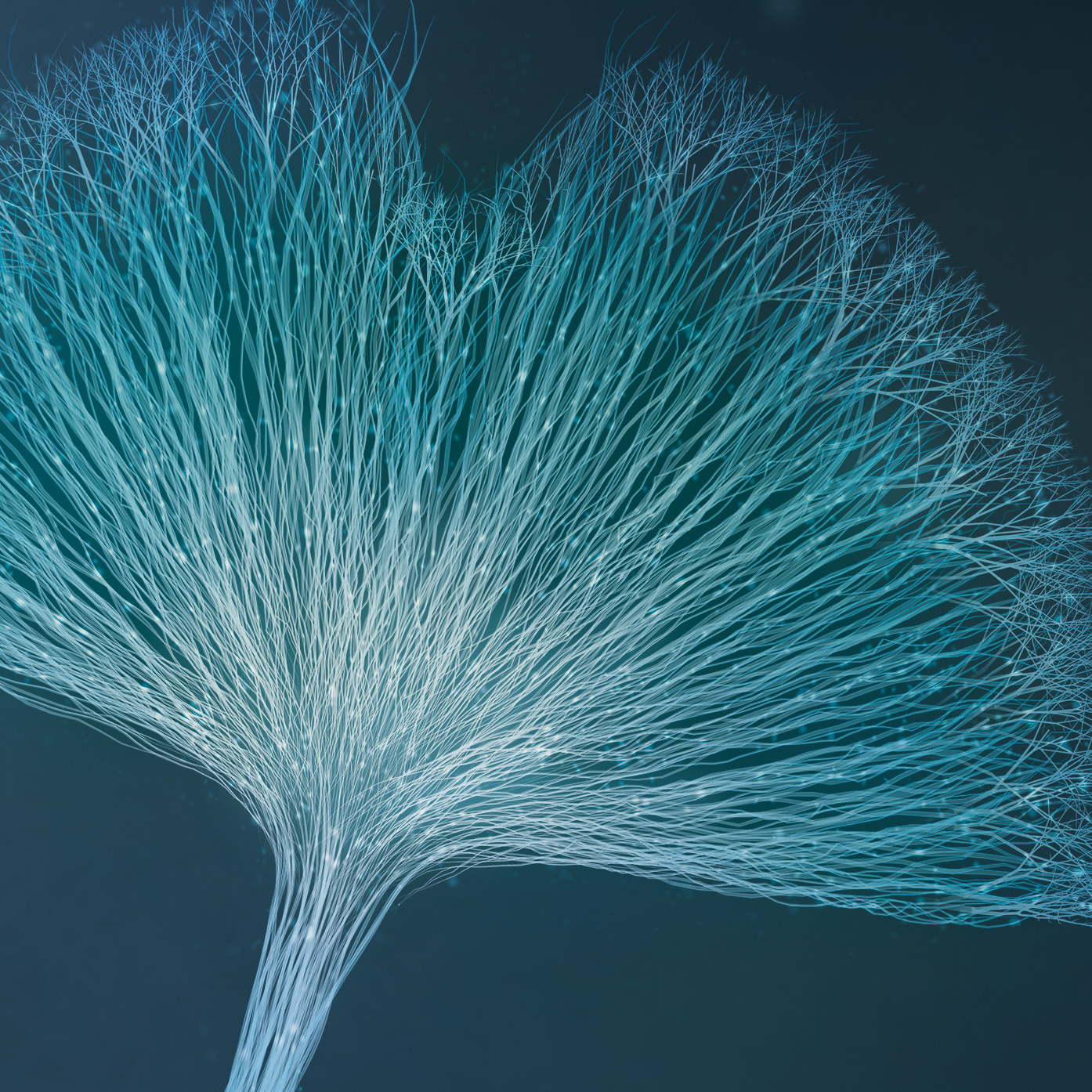 Das Symfona Key Visual stellt ein neuronales Nervensystem in Form eines Ginkgoblatts dar und vereint Wissenschaft & Emotion.